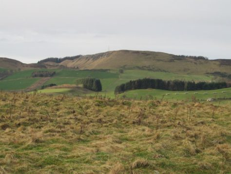 Lundie Craigs from Bowhouse Hill