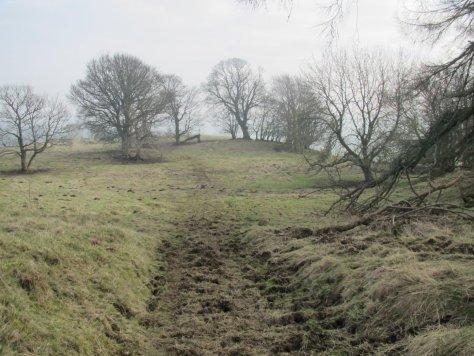 Smithton Knowe, looking east