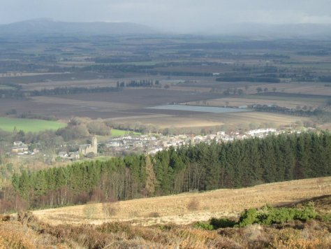 Newtyle from Auchtertyre Hill
