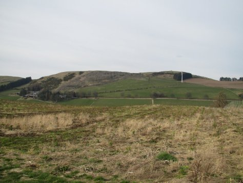 West Mains Hill from the south