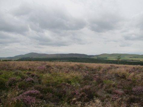 Summit of Lorns Hill