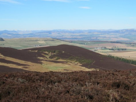 Laidloon Hill and Berry Hillock from Ironside Hill