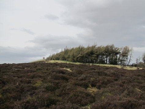 Kinpurney Hill and Unnamed Point 315