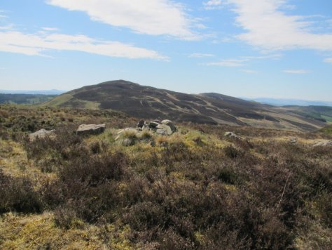 King's Seat and Black Hill from Lintrose Hill