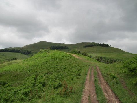 Approach to Turnhouse Hill