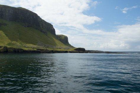 Canna bird cliffs