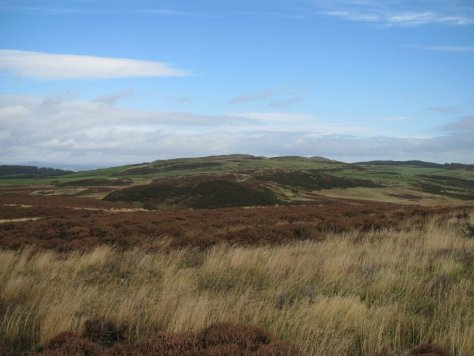 Hill of Franklyden from Swirlhead Hill