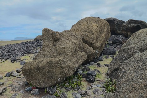 Fallen moai, One Makihi, Easter Island