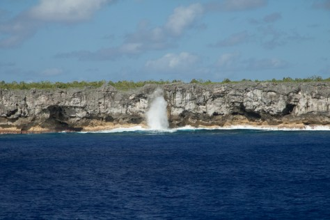 Surf on Henderson Island cliffs
