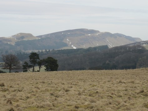 Dunsinane Hill and Black Hill from Montague Hill