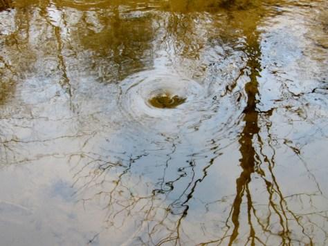 Pitroddie Burn draining into sinkhole, Pitroddie Den