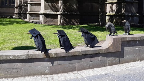 Penguin statues dressed as graduates