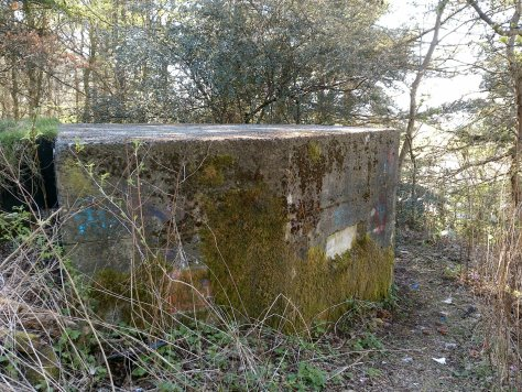 Dundee Law pillbox