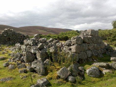 Glenfenzie ruins