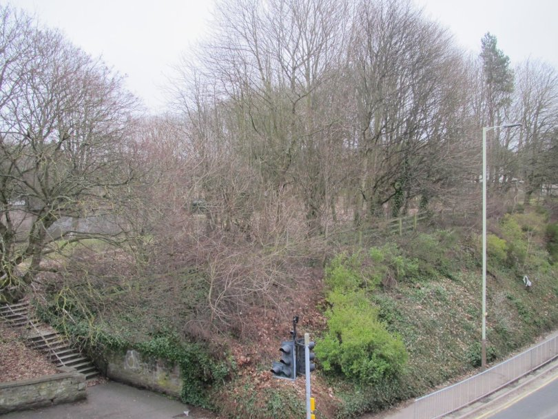 View from the top of the old Lochee High Street railway bridge