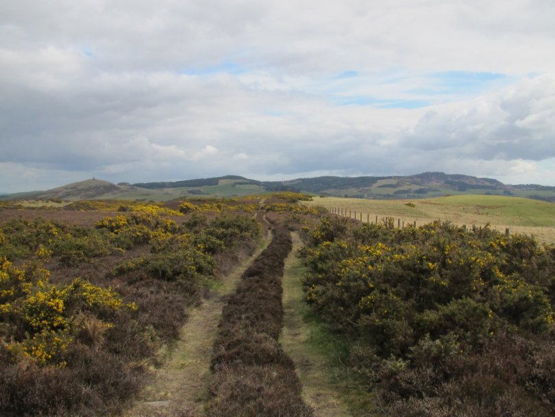 Track between Mackenzie Meridian and Newtyle Hill
