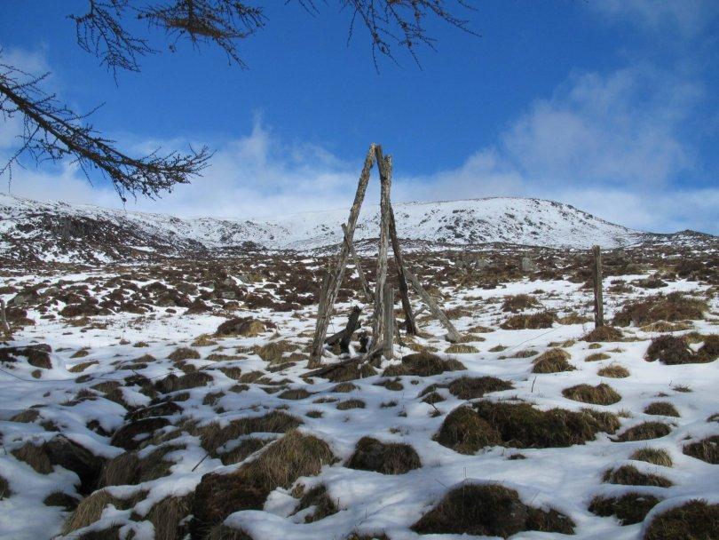 Remains of old stile and deer fence below Cairn Broadlands