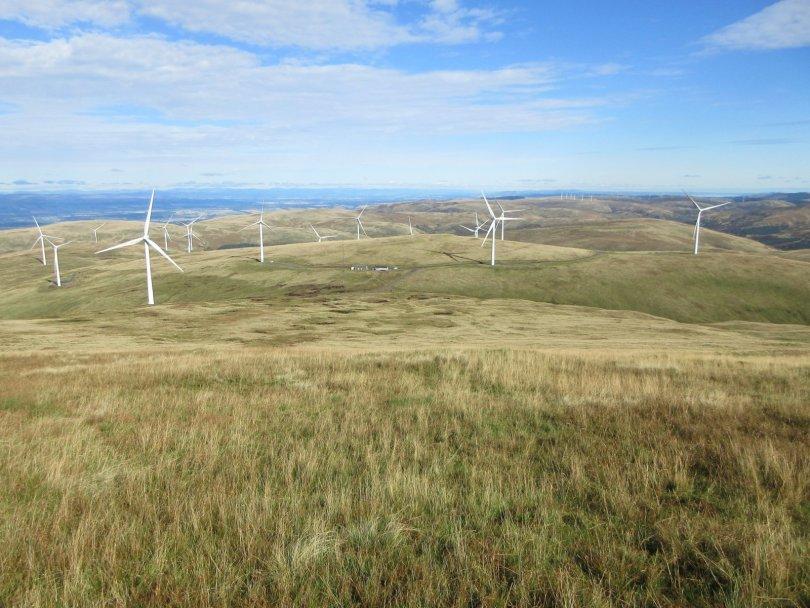 Descent to Burnfoot Hill Wind Farm from Ben Buck