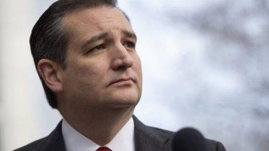 Photo of Ted Cruz sale en defensa de empresas norteamericanas no pagadas por Pemex