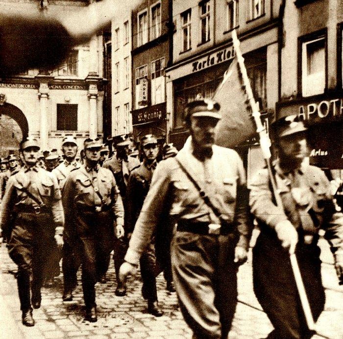 Danig Pro-Nazi demonstrations