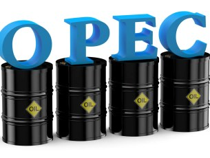 40230479 - opec concept isolated on white background