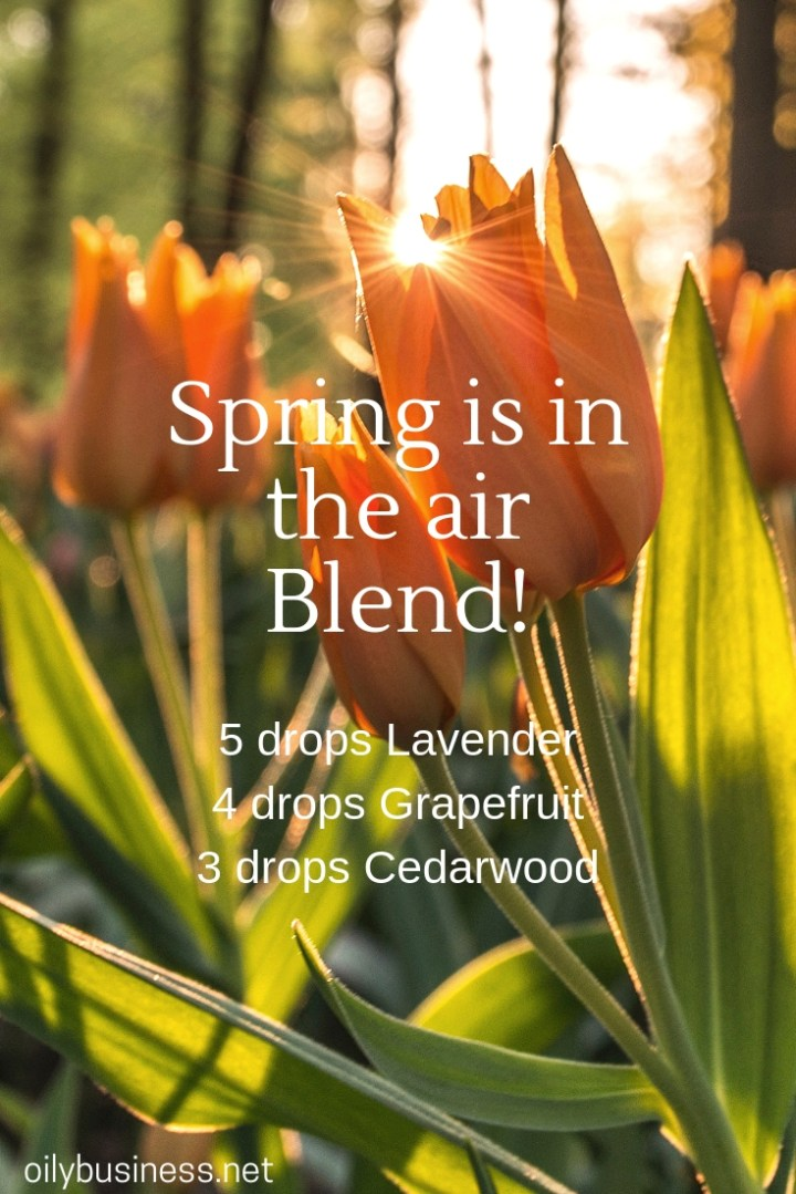 Spring is in the air Blend