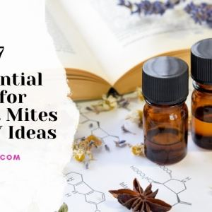 Essential Oils for Dust Mites