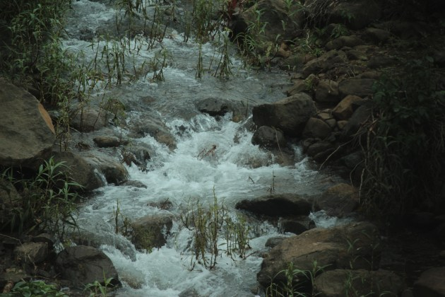 The soothing sounds of water against rocks