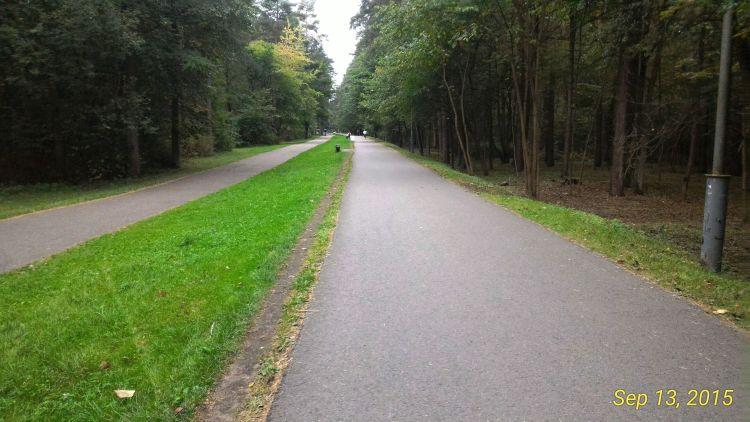 While I was running through Vingis Park - the largest park in Vilnius