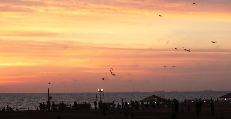 Kites fly in the burning sky