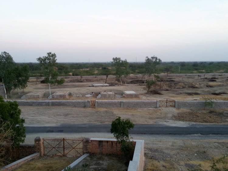 The simple landscape of Bishnoi