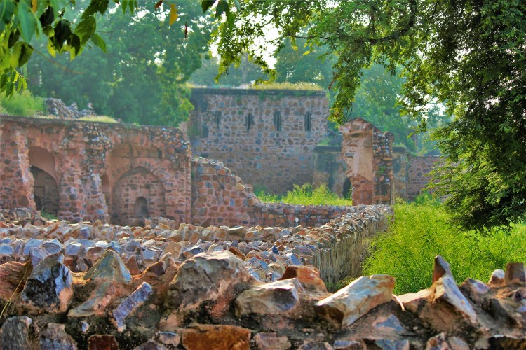 Delhi's Feroz Shah Kotla has stories that attract many curious listeners to this haunted fort complex.