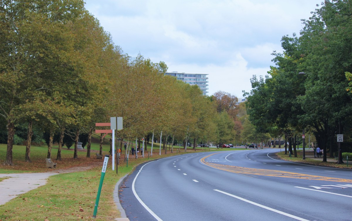 Trees that line the highways talk about oncoming autumn.