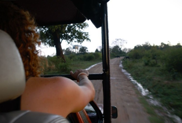 Safari in Sri Lanka (Courtesy: Eileen Cotter Wright)