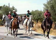 Encontro equestre em Pinhel no domingo