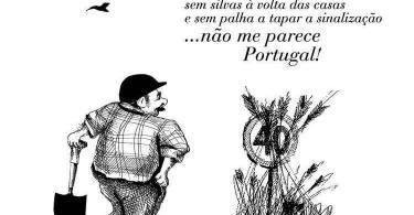 Cartoon 9