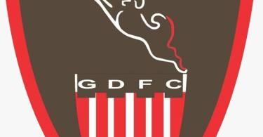Gdfc1