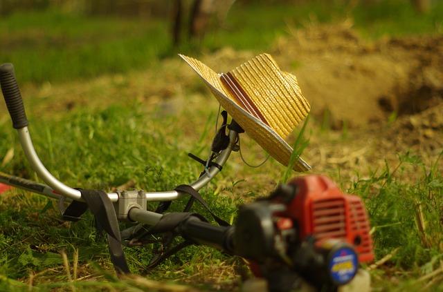 【暑いのに草はめっちゃ元気やん】草刈りに持って行くもの