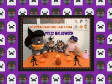 A disfrazarse en Halloween ¡¡