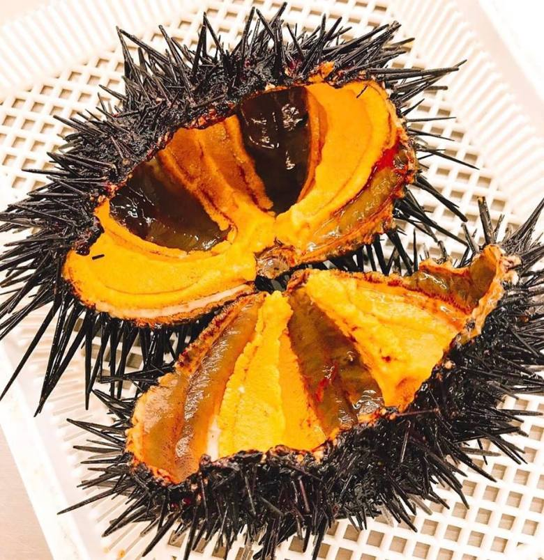 "Photo Description: a shot of uni in its shell. The spiky out shell which is a almost black in color is contrasted from the orange ""compartmental"" sections of gonads."