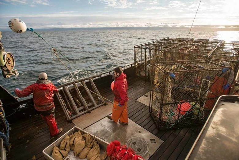 Photo Description: an image of the deck of a crab boat along with the crab pots. In the image there are three fisherman onboard in their orange survival suits.
