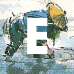 """Photo Description: Letter Block to demarcate Echigo. The graphic is a square that is 150x150px, the letter """"E"""" in Futura Bold white font is depicted atop a background utilizing the an illustration from Echigo of a farmer bent over planting rice in a rice field."""