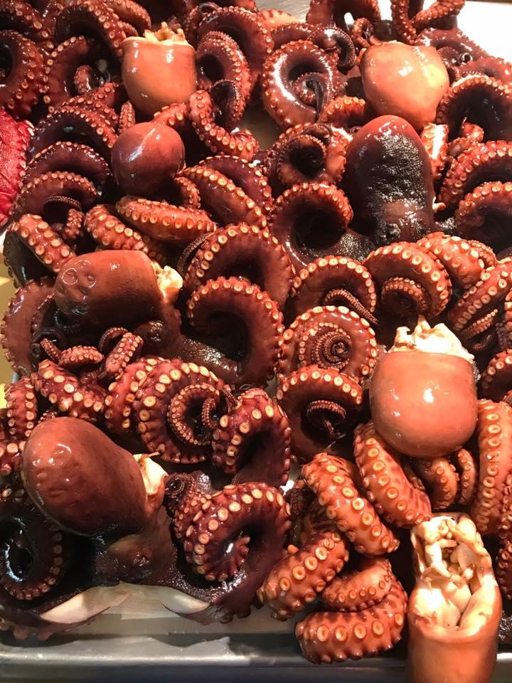 Photo Description: a close-up shot of several tako (octopus).