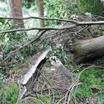 雄蛇ヶ池8/25の状況、台風9号被害現地確認してきました(詳報)