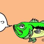 【まとめ】バス釣り漫画15本
