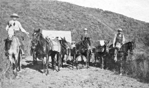 George Bald (center).