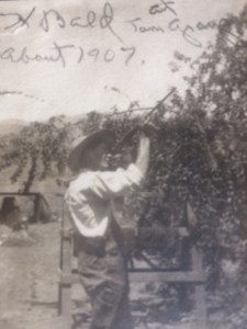 """""""H Bald at Tom Grays about 1907"""" is written along the top of this photo."""