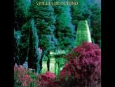 Discos Escondidos #089: Violeta de Outono - Violeta de Outono (1987)