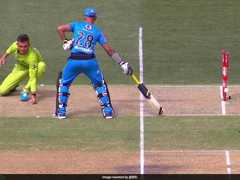 """Big Bash League: Adelaide Strikers Batsman """"Run Out At Both Ends"""" In Bizarre Dismissal. Watch"""