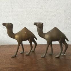 マスコットボーイズ、two camels